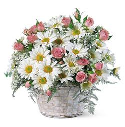 sepet içerisinde papatya ve güller